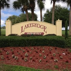 Lakeridge Winery, Clermont, Florida. Went there with Ann & Mark. 11-2013