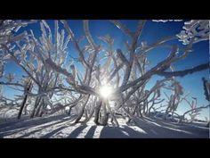 Bieszczady in the winter... amazing...  #bieszczady #winter #mountains #gory #poland #film #polska #zima