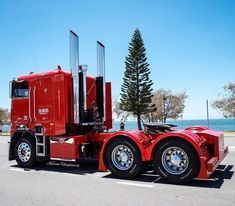 old cars and trucks Show Trucks, Big Rig Trucks, Old Trucks, Pickup Trucks, Dually Trucks, Custom Big Rigs, Custom Trucks, Diesel Trucks, Freightliner Trucks