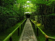 """Koutou-in"" temple in Kyoto, Japan"
