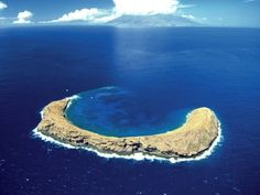 "Sail Trilogy - Molokini's crater basin is ideal for snorkeling and SNUBA.  This is just one of the ""tours"" offered."