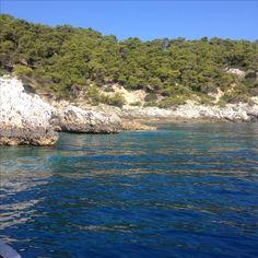 vegetazione mediterranea  alle isole Tremiti