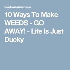 10 Ways To Make WEEDS - GO AWAY! - Life Is Just Ducky