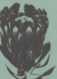Design Team Fabric Protea Silk Duck Egg