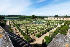 Le Parterre de l'Orangerie accueille 1500 arbres en caisse. (Versailles)