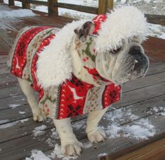 English Bulldog Coat and English Bulldog HAT set, Nordic Ski Winter Snow Red Reindeer Winter Sports Pet Clothes Scandanavian Folk Art