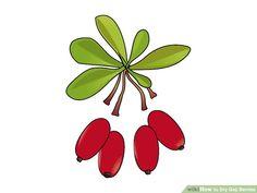 4 Ways to Dry Goji Berries - wikiHow Dried Goji Berries, Cheese Cloth, Dark Places, Sun Dried, Raisin, Food, Essen, Meals, Yemek