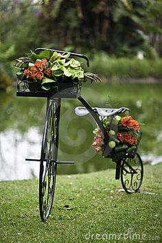 Photo about A wrought iron bicycle decorated with flowers on a green grass patch with a pond in the background. Image of flowers, ornate, wrought - 14177268 Bicycle Cart, Bicycle Decor, Old Bicycle, Old Bikes, Love Flowers, Beautiful Flowers, Fruits Images, Flower Cart, Stock Foto