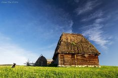 ocolis alba - Αναζήτηση Google Romania, Cabin, House Styles, Google, Home Decor, Homemade Home Decor, Cabins, Cottage, Interior Design