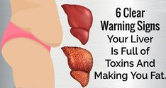 As you probably already know, the liver is an important organ as it transforms toxins into waste, which the body …
