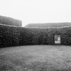 View of Carl Theodor Sørensen's Musical Garden in Herning, Denmark, from within a large oval hornbeam hedge. From Tree Gardens: Architecture and the Forest. Garden Hedges, Garden Trees, Luxury Landscaping, Garden Landscaping, Landscape Architecture, Landscape Design, Hornbeam Hedge, Sloped Yard, Traditional Landscape