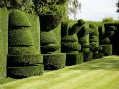 At home with Edward Scissor-Hands. Topiary in a private garden in North Yorkshire, England // Green Home