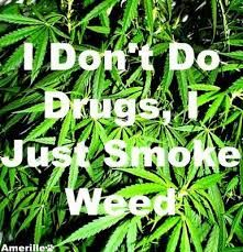 #marijuana #cannabis #seeds #weed #joint #ganja #smoke #bong #roor #vape #dab #oil #medical #high #thc #cbd #trichrome #amber #bud #illigal #legal #nirvana #420 #weed #weedportal #kush #stoned #high #nirvana #pot #marijuana #marihuana #420 #drugs #drug #j