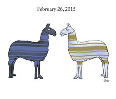 Two llamas. One Dress. An Audience of Millions.