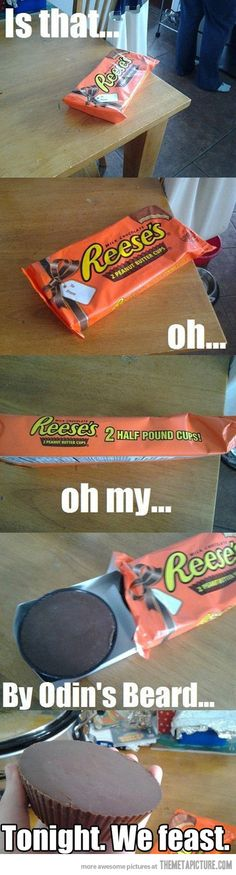 Reese are my favorite candy! I'd get so fat after this considering I'd get like five and then throw up. But it would be worth it