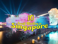 Singapore | Amazing Tourist Attractions in Singapore | Tourism Guide - WATCH VIDEO HERE -> http://singaporeonlinetop.info/travel/singapore-amazing-tourist-attractions-in-singapore-tourism-guide/    This video features the top 10 most attractive and must visit tourist spots in Singapore like Gardens by the Bay, Marina Bay Sand, China Town, Singapore Zoo, Fort Canning Park, Orchard Road, Sentosa Island, Singapore Flyer, Universal Studio and Raffles Hotel. The Republic of Singa