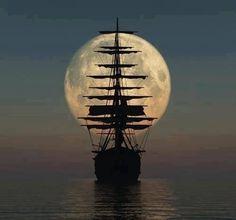 sailor sky
