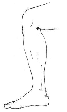 digitopuntura, dolor de rodilla                                                                                                                                                      Más