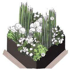 Projet aménagement jardin : Jardin vert et blanc