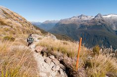 Routeburn Track One of New Zealand's Nine Great Walks Great Walks, All Things New, South Island, Wine Tasting, New Zealand, Beautiful Places, Track, Hiking, Tours