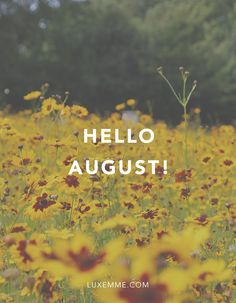 Exceptional Hello August! Summer Please Donu0027t Leave Us Just Yet! #august #