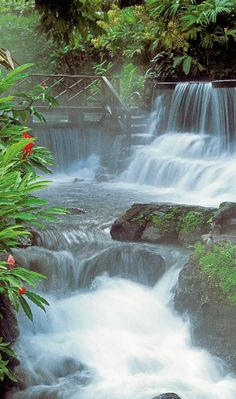 Thermo-mineral rivers flow through gardens at Tabacon, forming natural waterfalls and pools.