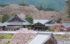 Japaninfo added 56 new photos to the album: ความศรัทธาในพุทธศาสนา+ธรรมชาติอันงดงาม@วัด Hase-dera,Nara/6 เมษา — at 総本山長谷寺.