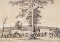 McIvor Diggings, July 26, 1853 (Langley, Hawkes, & Foster's Stores) Victoria