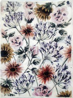 untitled flowers xvii by lourdes sanchez