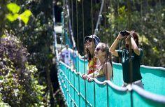 Skytrek Arenal Ziplining Canopy Tour Costa Rica