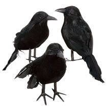 You can get these crows for a $1 each at dollar tree but need to order 36 at a time.  Best deal out there.