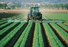 Você já deve ter ouvido aquela história de que os pesticidas são necessários para que a indústria alimentar produza alimentos em quantidade suficiente para alimentar toda a população mundial. Mas... e se isso não fosse completamente verdade? É o que sugere um novo relatório apresentado pela ONU. O documento foi apresentadoao Conselho de Direitos Humanos da ONU, na última quarta-feira, 8. Nele, são detalhados os impactos que o uso de agrotóxicos têm no meio ambiente e na saúde humana. De…
