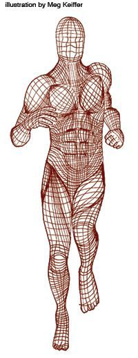 Understanding Your Fascia Fascia may be the missing piece for your lingering injury By Julia Lucas