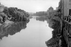 Crisul Repede in 1964 | Oradea in imagini