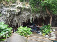"""Enjoy the ambiance of Okinawa's aptly named Cave Cafe (plus """"chest hair of the ancients""""!)"""