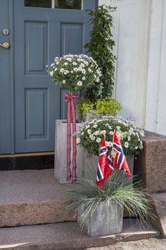Hipp Hipp Hurra for mai! Vi gir deg tips til hvordan du kan pynte med blomster ute til den store nasjonaldagen.