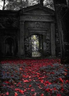 Photography Discover Beautiful color on a dark autumn afternoon photography creepy Dark Autumn Abandoned Buildings Abandoned Places Abandoned Homes Dark Fantasy Gothic Art Gothic Beauty Victorian Gothic Dark Art Dark Autumn, Abandoned Buildings, Abandoned Places, Abandoned Homes, Dark Fantasy, Dark Beauty, Gothic Beauty, Dark Art, Dark Gothic Art