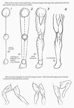 a realistic leg