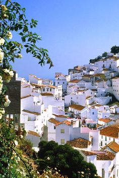 looks so peaceful- Mountain village Casares, Malaga, Spain. Loved this part of Spain. Places Around The World, Oh The Places You'll Go, Travel Around The World, Places To Travel, Places To Visit, Wonderful Places, Beautiful Places, Voyage Europe, Mountain Village