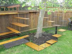 Back Yard Kitty Playground that would be perfect for the boys!!