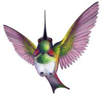 "Hummingbird Animal Totems offer attributes like:    energy  vitality  joy  renewal  sincerity  healing  persistence  peace  infinity  agility  playfulness  loyalty  affection  The Hummingbird animal totem most important message to you is:  ""The sweetest nectar is within!"""