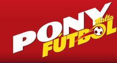 Para darle reconocimiento al evento Pony Fútbol 2011, creamos el album virtual con sus participantes, ahora cada jugador tendría el reconocimiento gracias al Pony Fútbol.