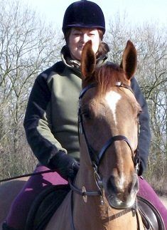 Cob or ID wanted on loan Suffolk My Horse, Horses, Wanted Ads, Cob, Riding Helmets, Horse