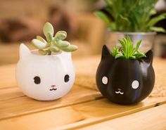 Something we liked from Instagram! New design. Go cute #newyorkcity #3dprint #3dprinted #3dprinting #3dprinter #design #cute #love #lovely #cat #feline #kitty #planter #homedecor #home #plants #etsy #handmade #Brooklyn #williamsburg by printaworld3d check us out: http://bit.ly/1KyLetq