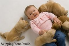 lab puppies and a baby?! makes my heart melt!