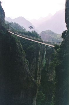 this is a cool looking bridge but seeing as im afraid of heights i wouldnt ever walk it no thanks.