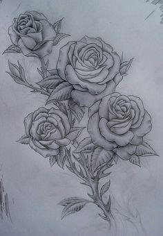 Four roses sketch