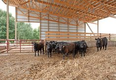 54' X 144' X 14' barn