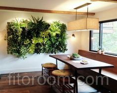 Green Wall Houseplant Pack// Live Mixed plants to create the perfect vertical garden//living wall//indoor plants//office space plants// Indoor Design, Fresh House, Vertical Garden Indoor, Garden Wall, Garden Ideas To Make, Plant Decor, Green Living, Indoor Plants, Indoor Plant Wall