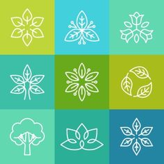 Vector ecology and organic logos in outline style  abstract design elements and signs